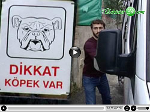 Üsküdar'da, bir evin bahçesinde kavga eden Rottweiler ve Boxer cinsi 3 köpek, kendilerini ayırmaya çalışan evin bakıcısına saldırdı.