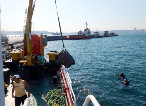 Mustafa Kara, ''1970'li yıllarda Boğaziçi'nde 60 çeşit balık yaşarken bu sayı denizin kirletilmesi nedeniyle zamanla 20'ye düştü.''