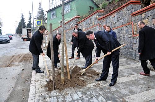 Üsküdar Belediyesi, ilçe genelindeki parkları yeşillendirmekle kalmıyor aynı zamanda cadde kenarlarına da vatandaşların talepleri doğrultusunda ıhlamur fidanları dikiyor.