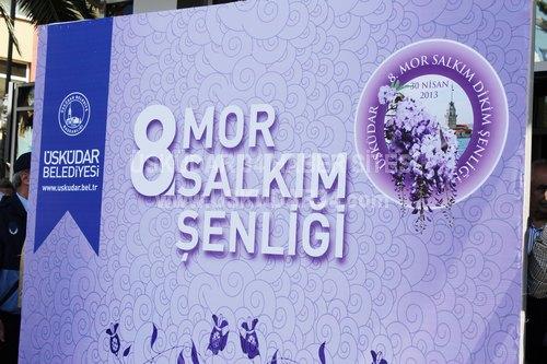 Üsküdar'ın tarihi dokusunun tamamlanması ve ilçenin renklendirilmesi amacıyla düzenlenen ''Mor Salkım Şenliği''nin 8'incisi Üsküdar Belediyesi önünde gerçekleştirildi.
