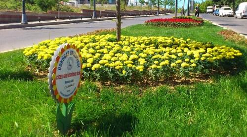 �sk�dar'�n park ve ye�il alanlar� yenileniyor