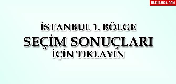 İstanbul 1. Bölge 2015 Genel Seçim Sonuçları