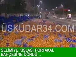 Selimiye Kışlası Portakal Bahçesine Döndü...