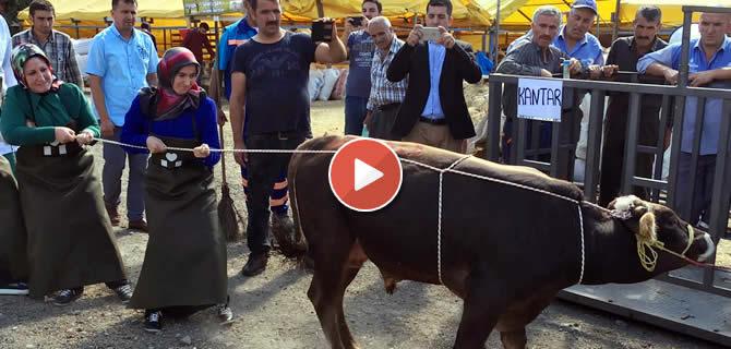 Üsküdar'da Kurban Bayramı hazırlıkları tamam