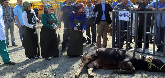 Üsküdar Belediyesi Kurban Bayramı'na Hazır