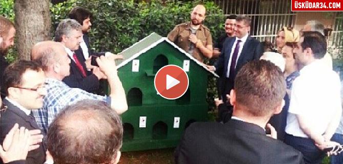 �sk�dar Belediyesi'nden Sokak kedilerine 10 y�ld�zl� otel